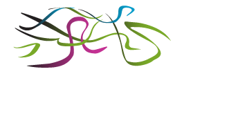 johnston court logo